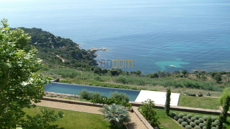 Genuine Castle with vineyards and panoramic sea views for rent heights of Ramatuelle Saint Tropez - swimming pool