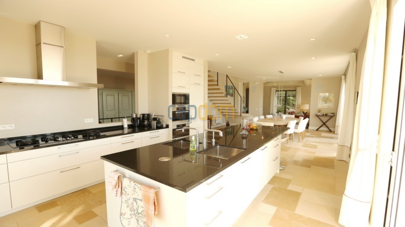 Holiday rental villa cap antibes sea view - kitchen