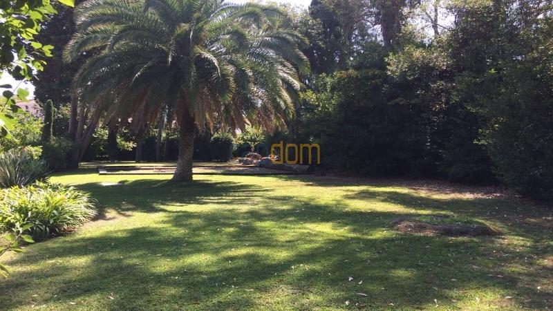 Property to restore Salis Beach Cap d Antibes - garden area