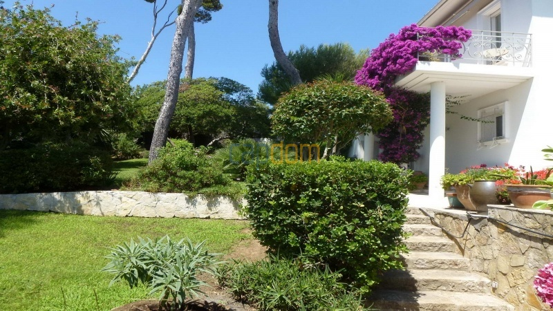 Charming Villa for Holiday Rental near Garoupe Beach Cap d'Antibes - Western facade