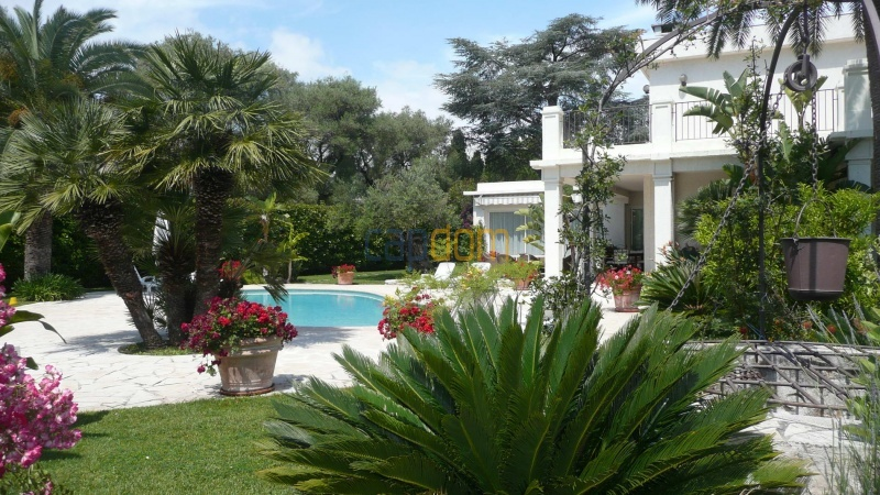 Contemporary Villa for rent in Cap Antibes - Swimming pool area