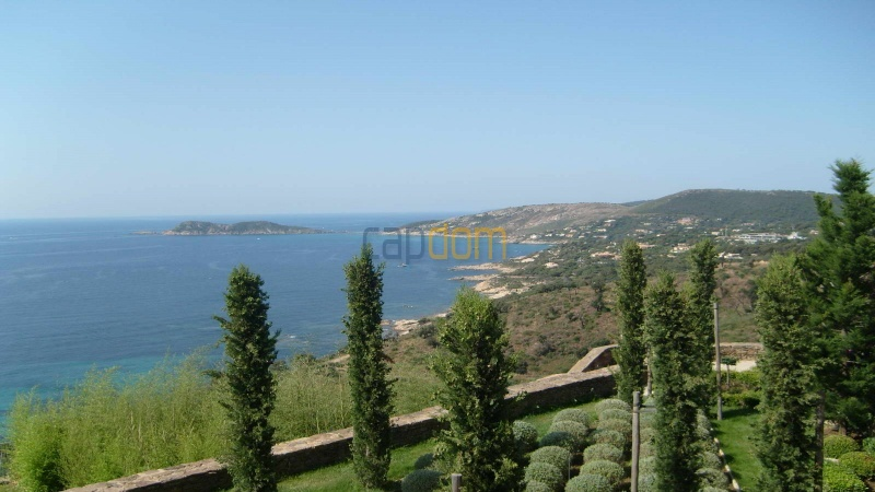 Genuine Castle with vineyards and panoramic sea views for rent heights of Ramatuelle Saint Tropez - Gardens