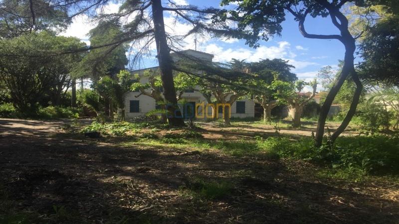 Property to restore Salis Beach Cap d Antibes - front park