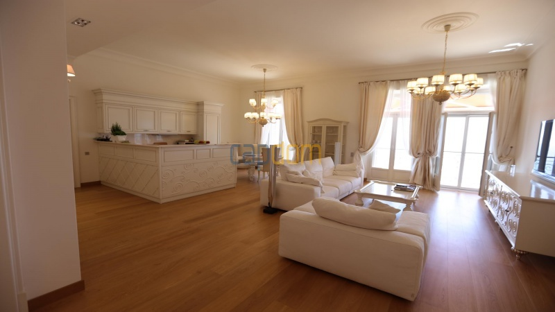 Fully renovated apartments for sale cap martin french riviera - living area